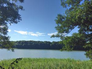 Lachspaziergang Lachen am Langsee